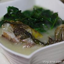 昂子魚菊花葉湯