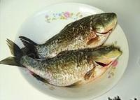 紅燒鯽魚的做法圖解1