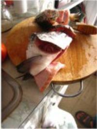 三文魚頭豆腐湯的做法圖解2