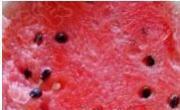 冰鎮西瓜汁的做法圖解1