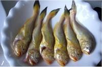 咸菜滷蒸梅童魚的做法圖解1