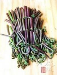 蒜泥拌蕨菜的做法圖解5