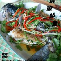 清蒸鱸魚的做法