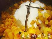 酸奶油杏子冰激凌的做法圖解4