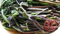 水蕨菜炒肉絲的做法圖解1