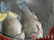 鯽魚豆腐湯的做法圖解3