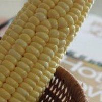 流動般的奶香玉米烙的做法圖解1